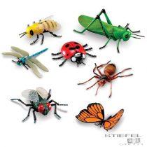 Jumbo insecte