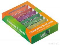 Levenhuk LabZZ CP24 Creaturi și plante - set de diapozitive pregătite